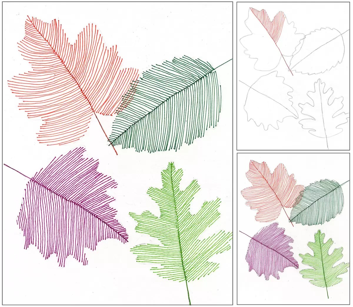 Transparent Line Art Leaves Art Projects For Kids
