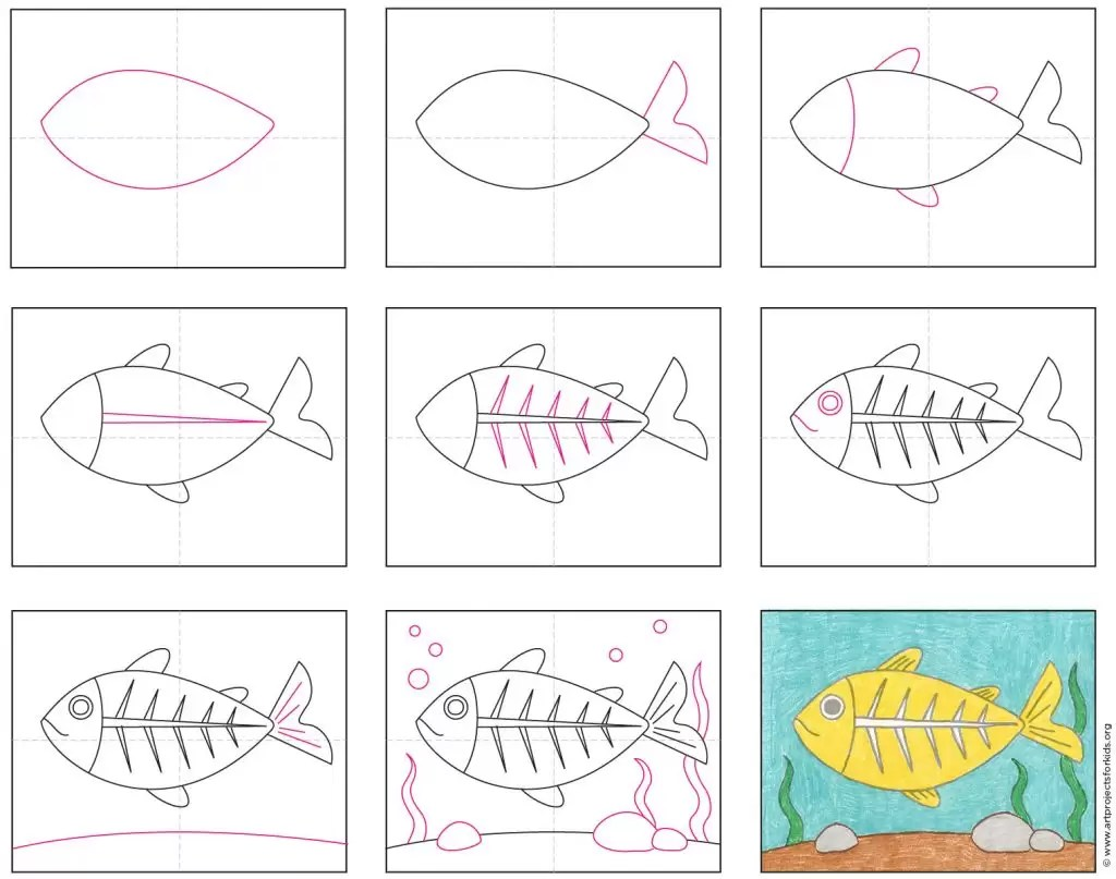 Draw An X Ray Fish Art Projects For Kids