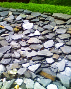 Rock garden at the de Young