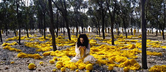 Shirin Neshat Women Without Men