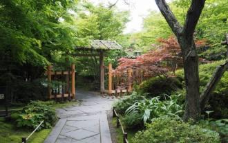 松島円通院の庭の風景写真