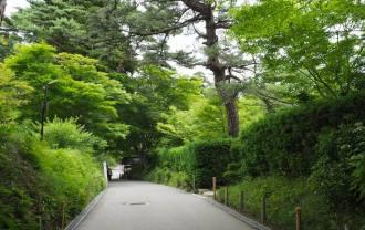 松島円通院の風景写真