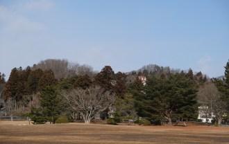 x-t3レビュー画質の評価奥州平泉観自在王院跡の冬の風景