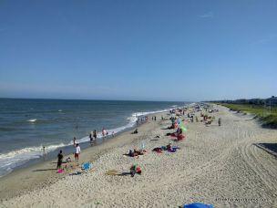 The sandy summer