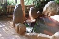 温泉の入浴法!湯冷めを防ぐ「分割浴」と疲労回復を促す「温冷交互浴」