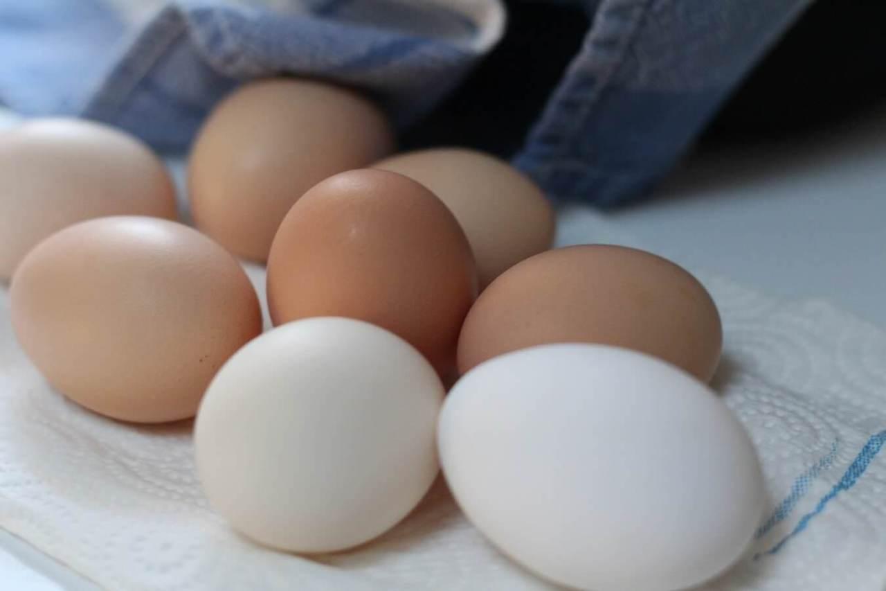 割れるのを防ぐ!自転車での買い物で卵が割れないように運ぶ方法6選