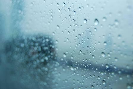 すぐに拭き取るように!窓に水滴が結露した時の適切な対処法3選