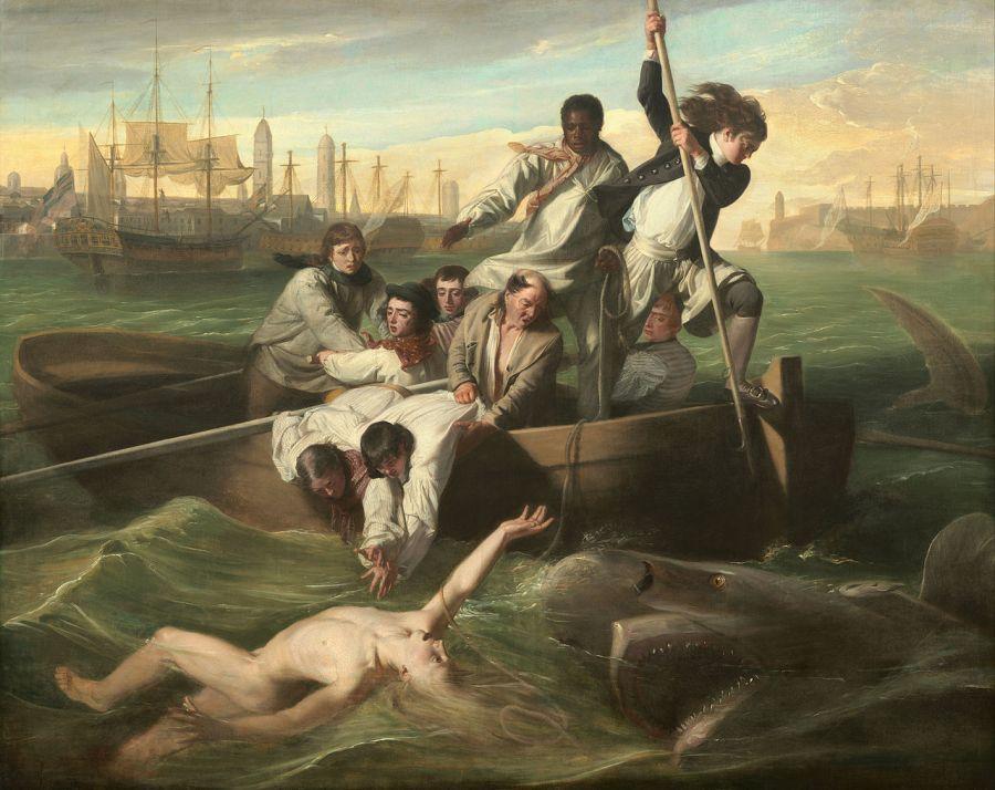 Джон Копли уотсон и акула