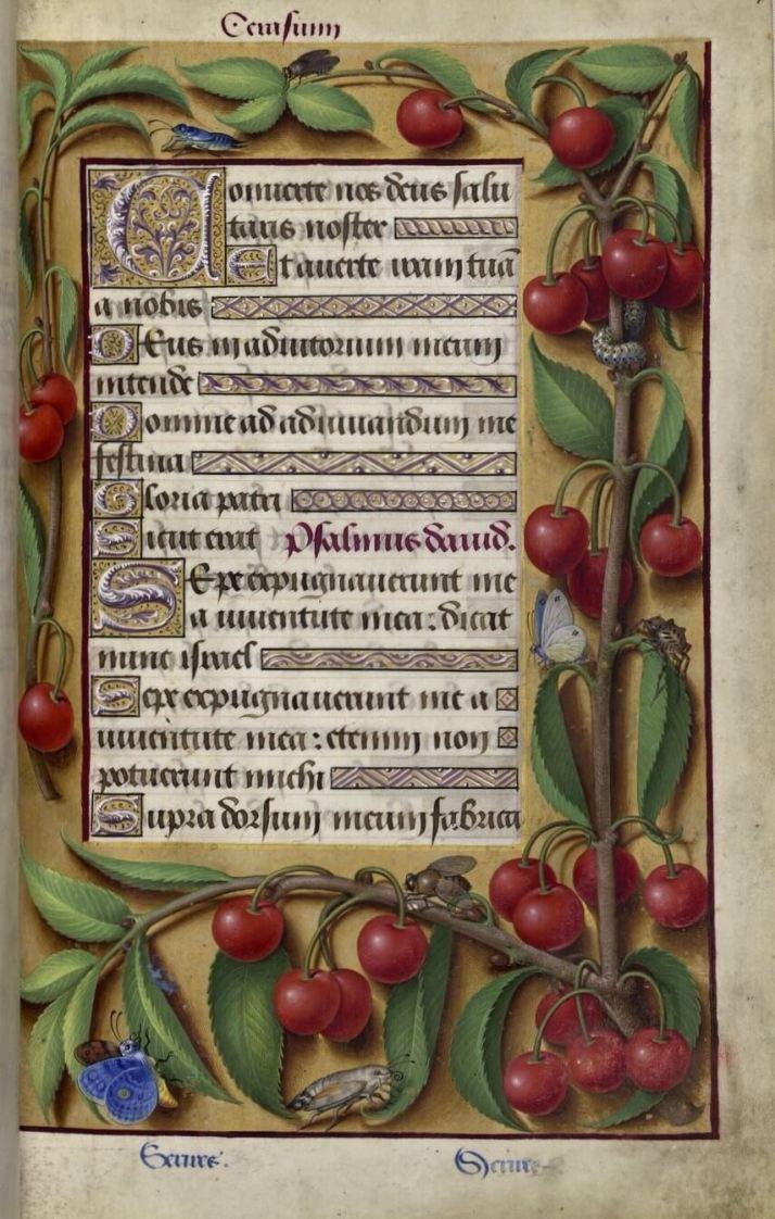 Часослов средневековья