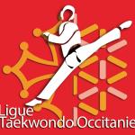 teakwondo occitanie