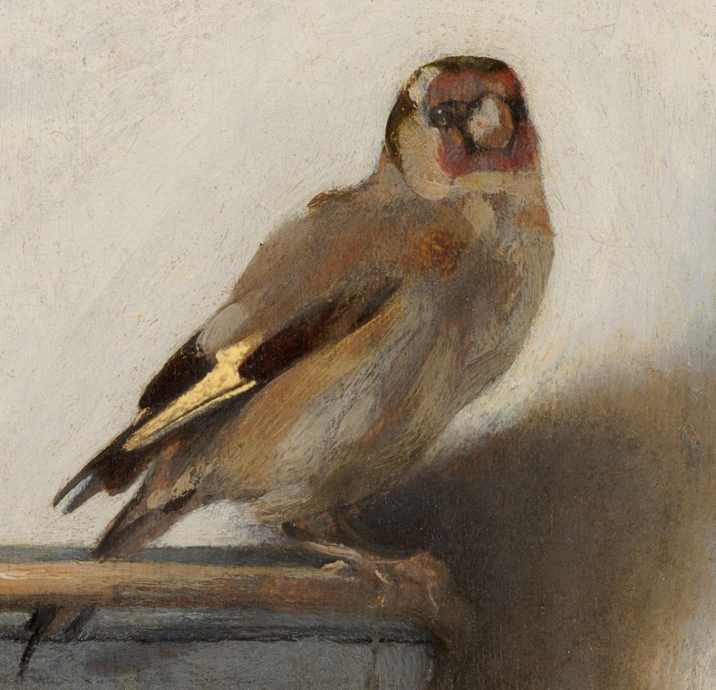 Fabritius the goldfinch fragment