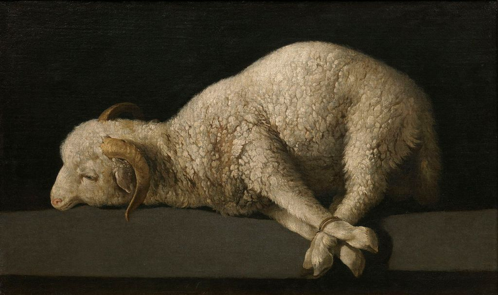 Francisco de Zurbaran. Lamb of God.