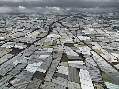 Edward Burtynsky, Agriculture, 2010. Greenhouses