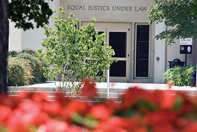 A view of the law school surrounded by trees and flowers. Photo by Jack Parker.