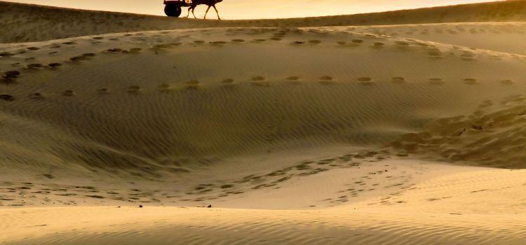 The Chants Of Thar Desert