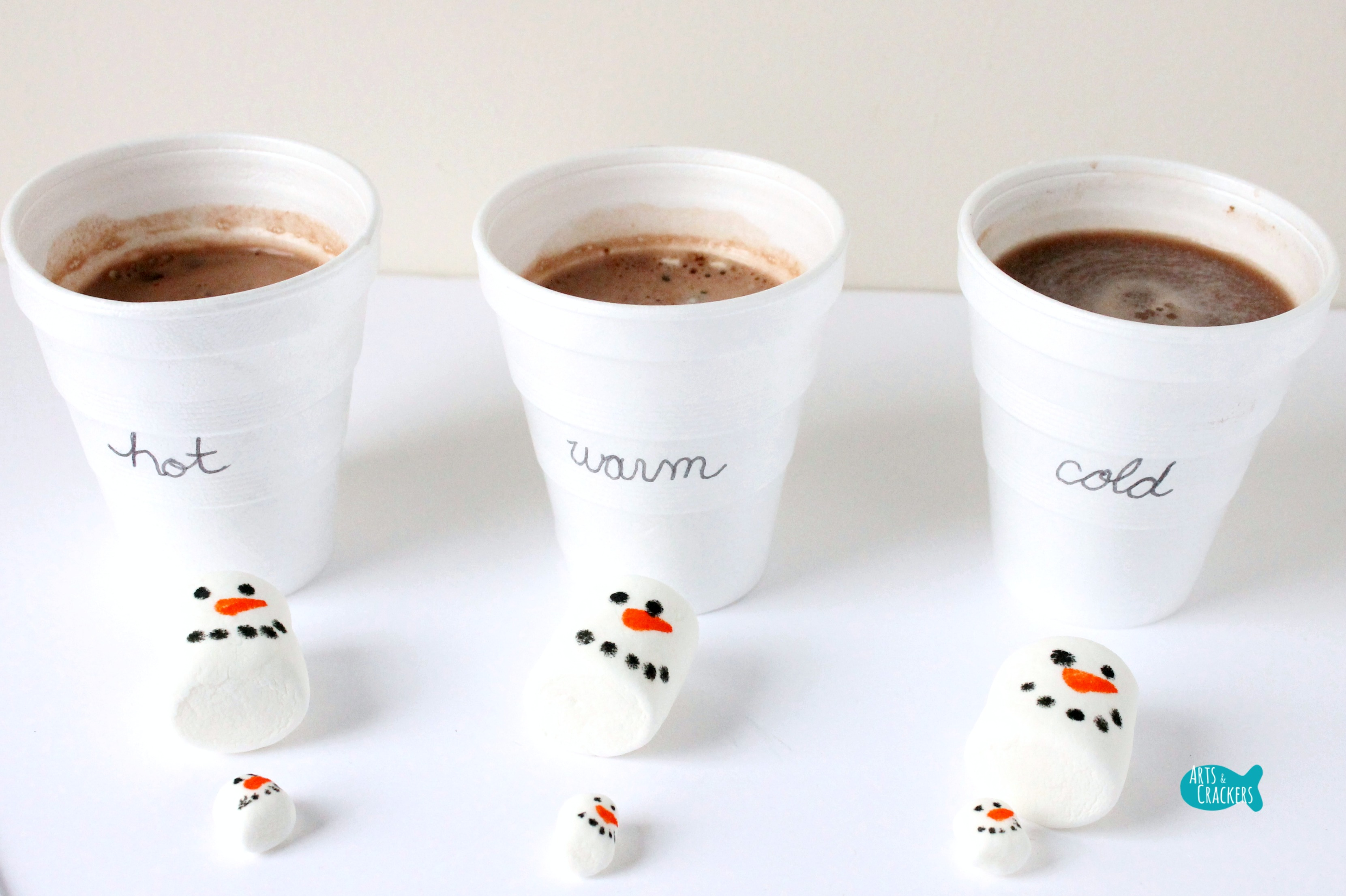 Hot Cocoa And Marshmallows Melting Snowman Activity For Winter