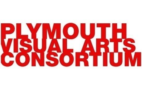 Plymouth Visual Arts Consortium