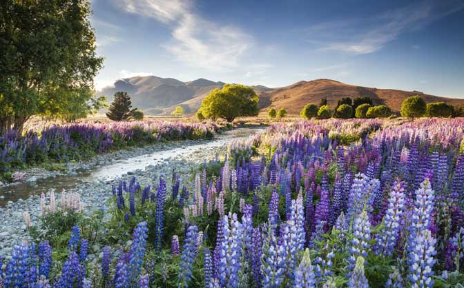 International Garden Photographer of the Year Exhibition Coming to Exeter