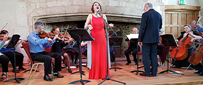 Dartington Chamber Orchestra with Merit Ariane Stephanos