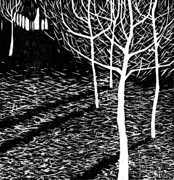Power and comradery of printmaking on show in Collective Works – an exhibition of printmaking from Press Gang in Totnes