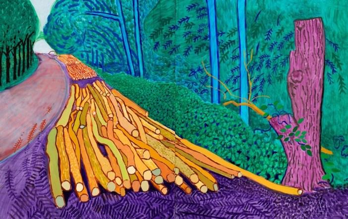 David Hockney inspiration explored at Van Gogh Museum