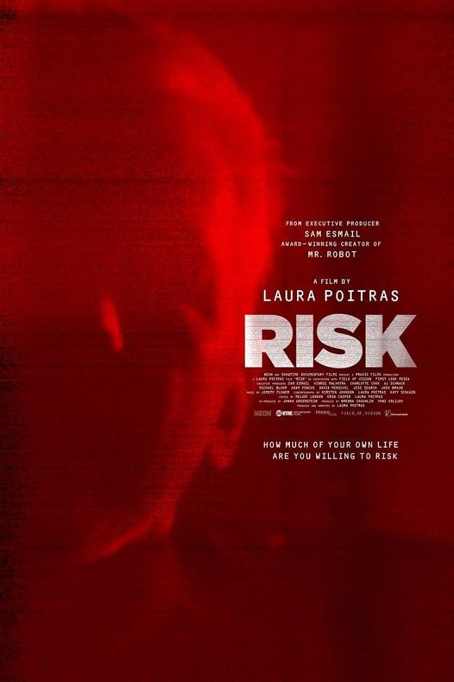 risk-movie poster