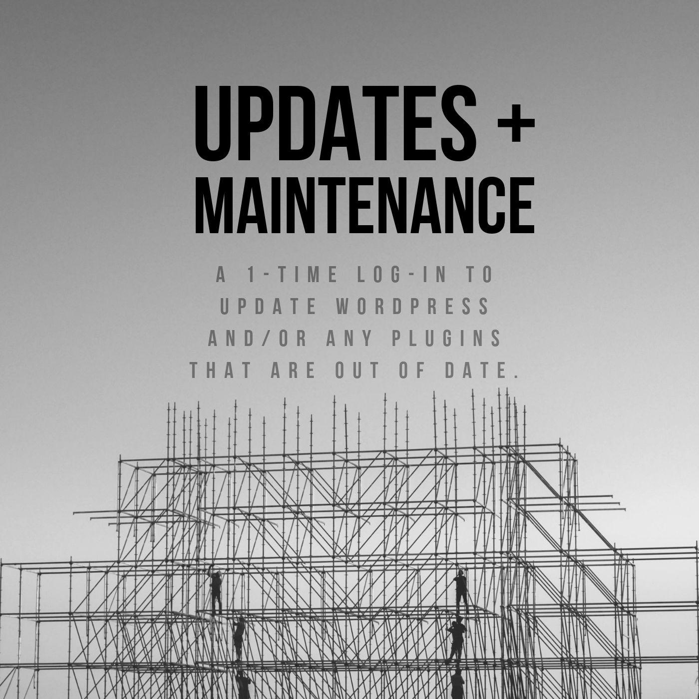 1 time wordpress website updates maintenance help for $35