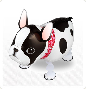 , Helium Walking Pets, Singapore Balloon Decoration Services - Balloon Workshop and Balloon Sculpting