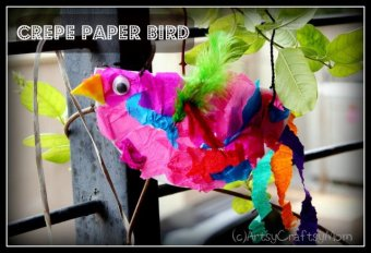 Craft Class 6 – Birds