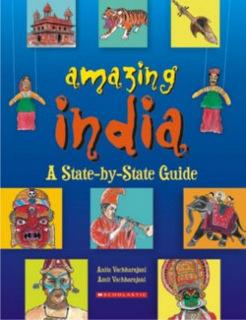 11-india-centric-books_amazing-india