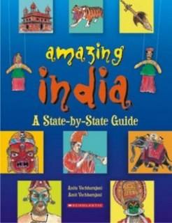 11-india-centric-books_amazing-india