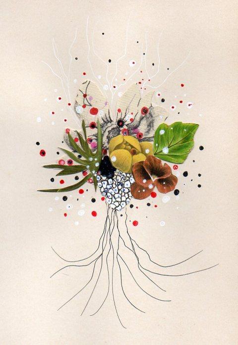 Flowering Seed #8 by Jenny Brown