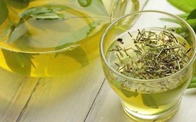 Para qué es bueno el té verde (y para qué no)