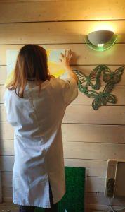 Atelier découverte art-thérapie evolutive® et Sophrologie au cabinet de Carignan-de-Bordeaux