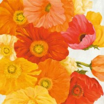 Spring Poppies II