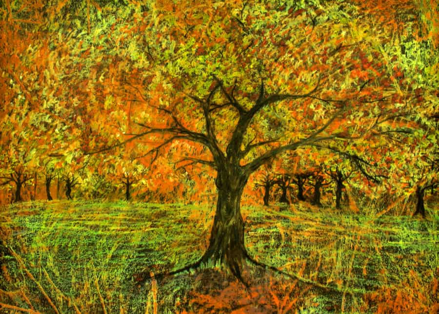 Dancing dryads, their limbs reappearing as autumn pulls their flaming foliage down to become the blanket for the earth