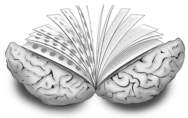 brain-book
