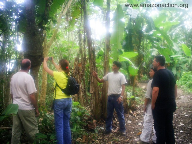Miguel the guide showing some medicinal plants