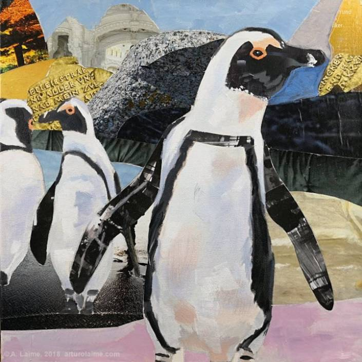 African penguins painting