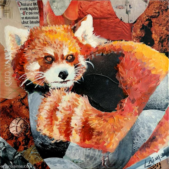 red panda 720