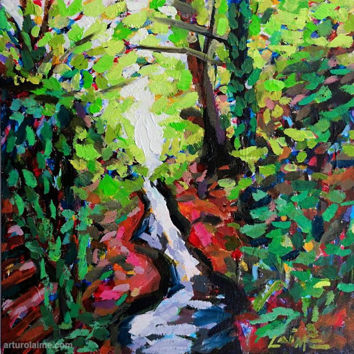 laufbachwasserfälle by Arturo Laime