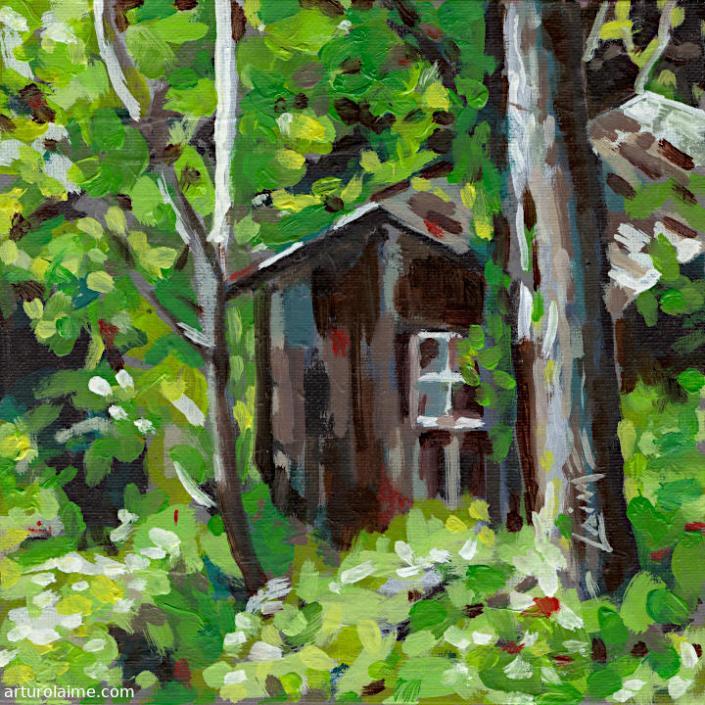 Geheime Hütte von Arturo Laime