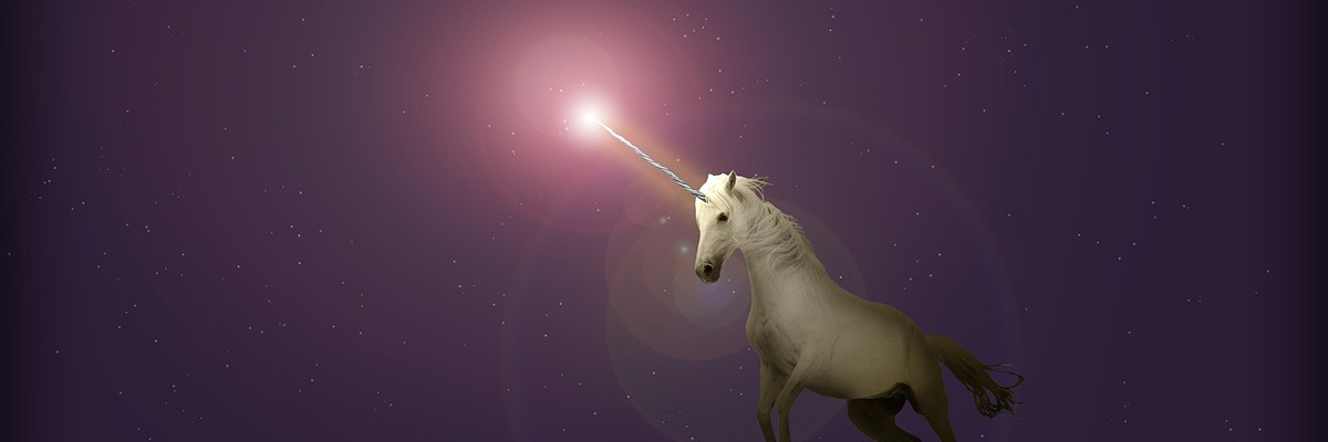 silicon valley unicorns
