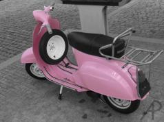 Vespa rosa