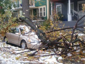 Car crushed by ice storm damaged tree. Facebook post by Kevin Michael Sthair