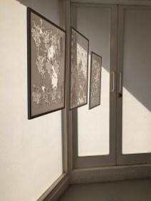 Jeanie Ho, Watching Walls