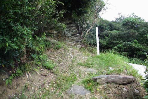 枯松神社 撮影アートワークス
