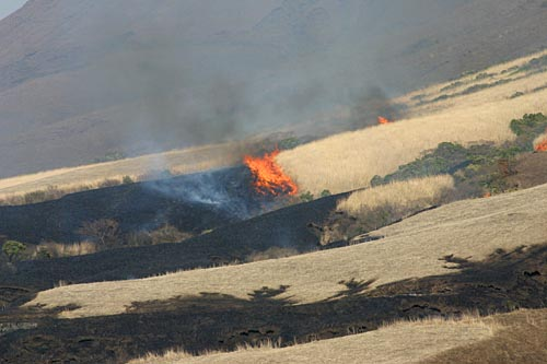 阿蘇山付近の野焼き