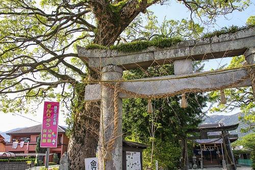 佐賀県 金立神社