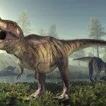 食べて進化する動物たち